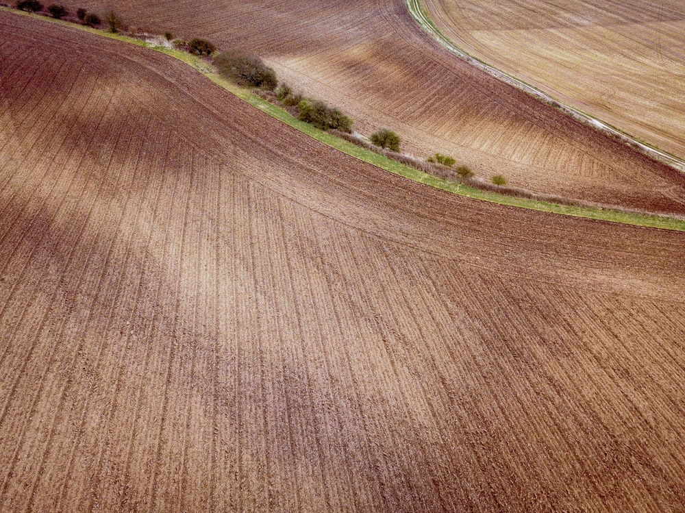aerial photography of field
