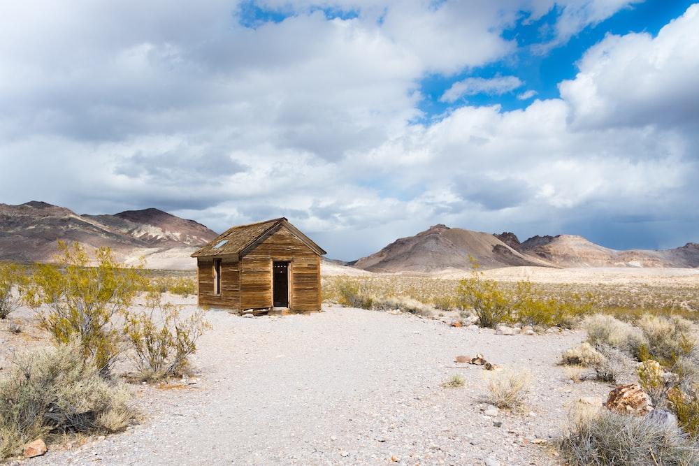 brown wooden shack near green grass