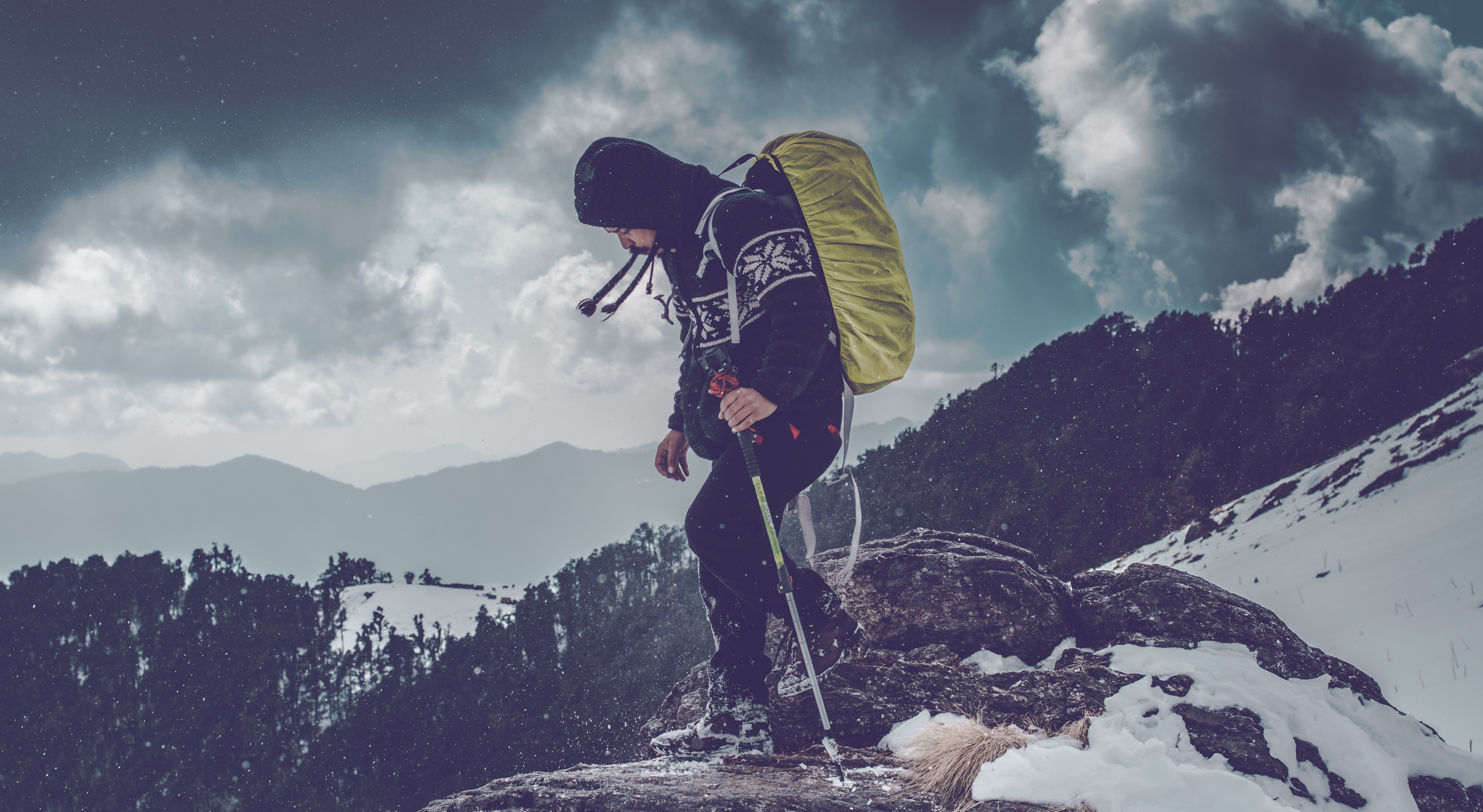 man carrying backpack standing on cliff near trees during daytime