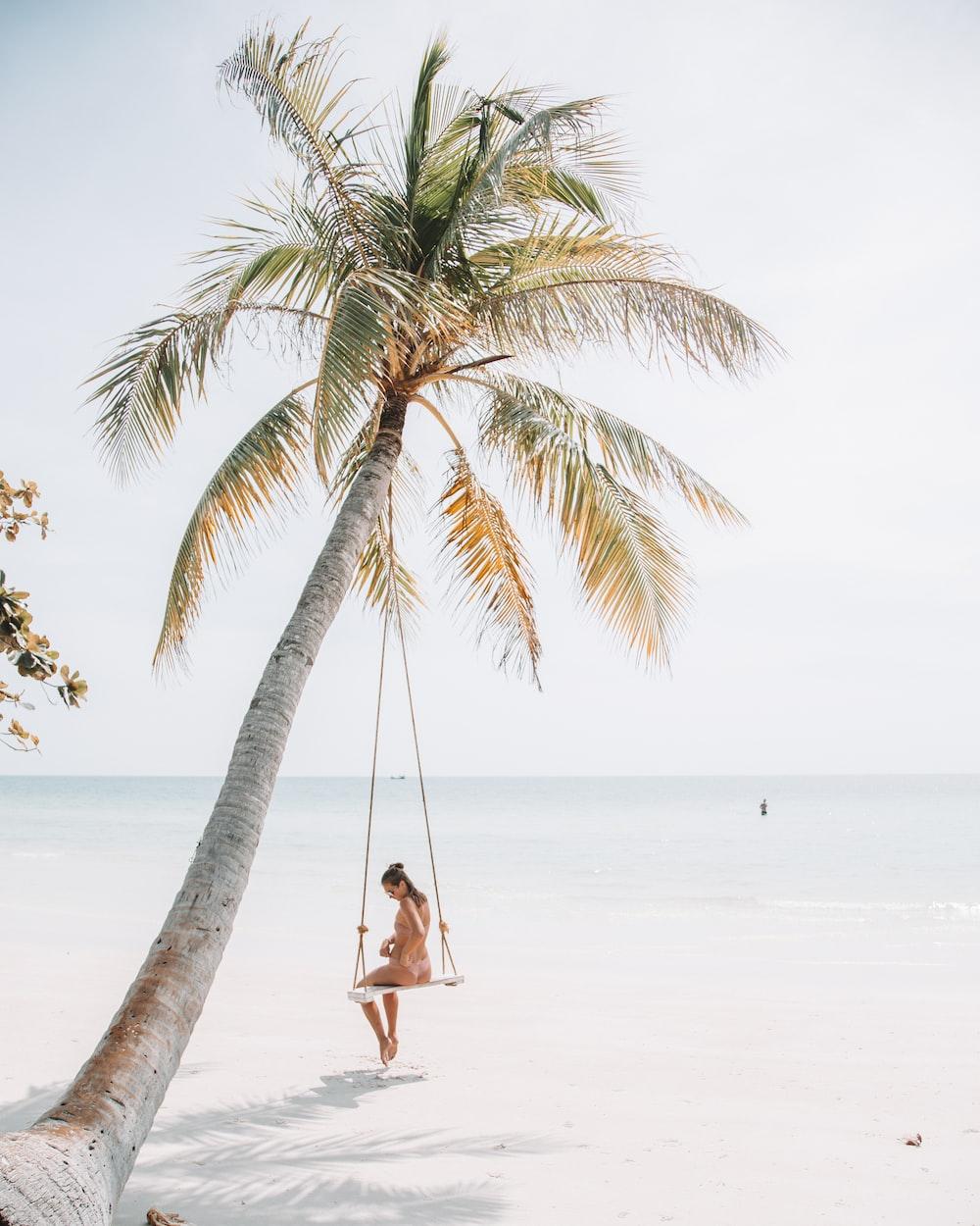 woman wearing bikini sitting on swing near coconut tree