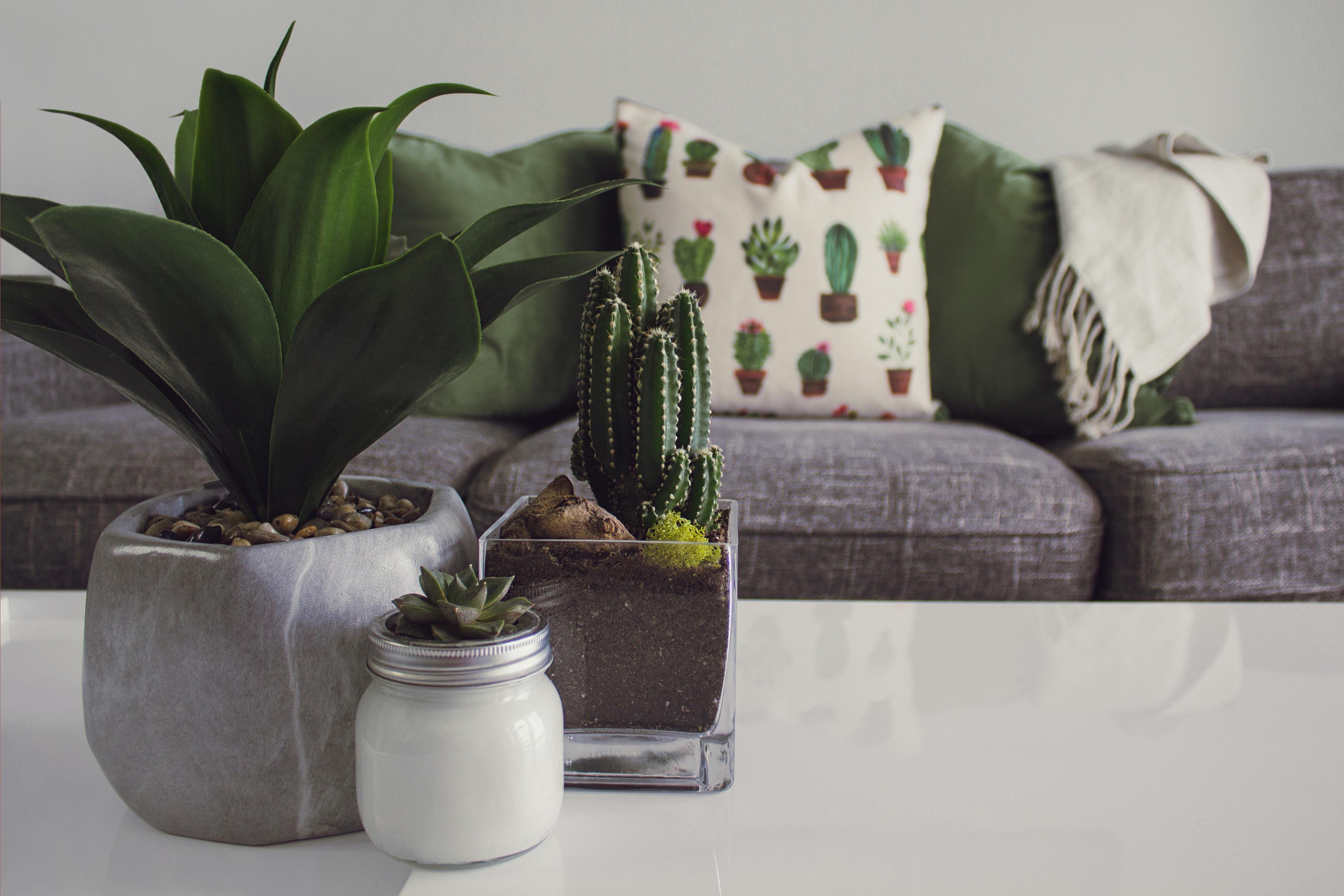 Charmant English U0026 Company. . Nashvilleu0027s Premier Home Furniture Consignment Store