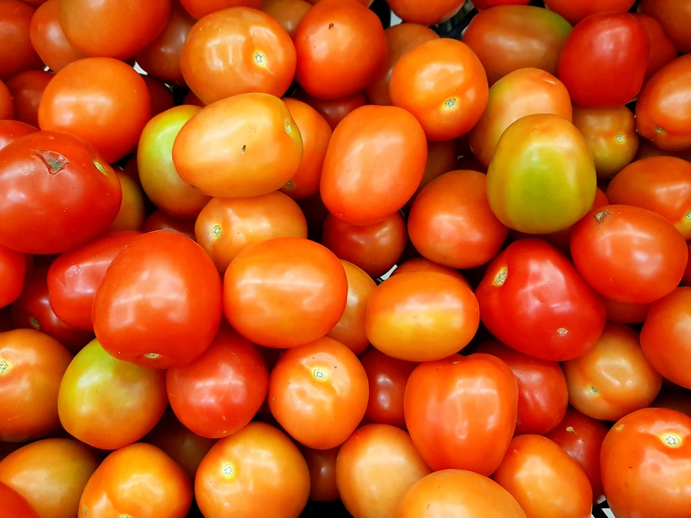 bunch of ripe tomatoes