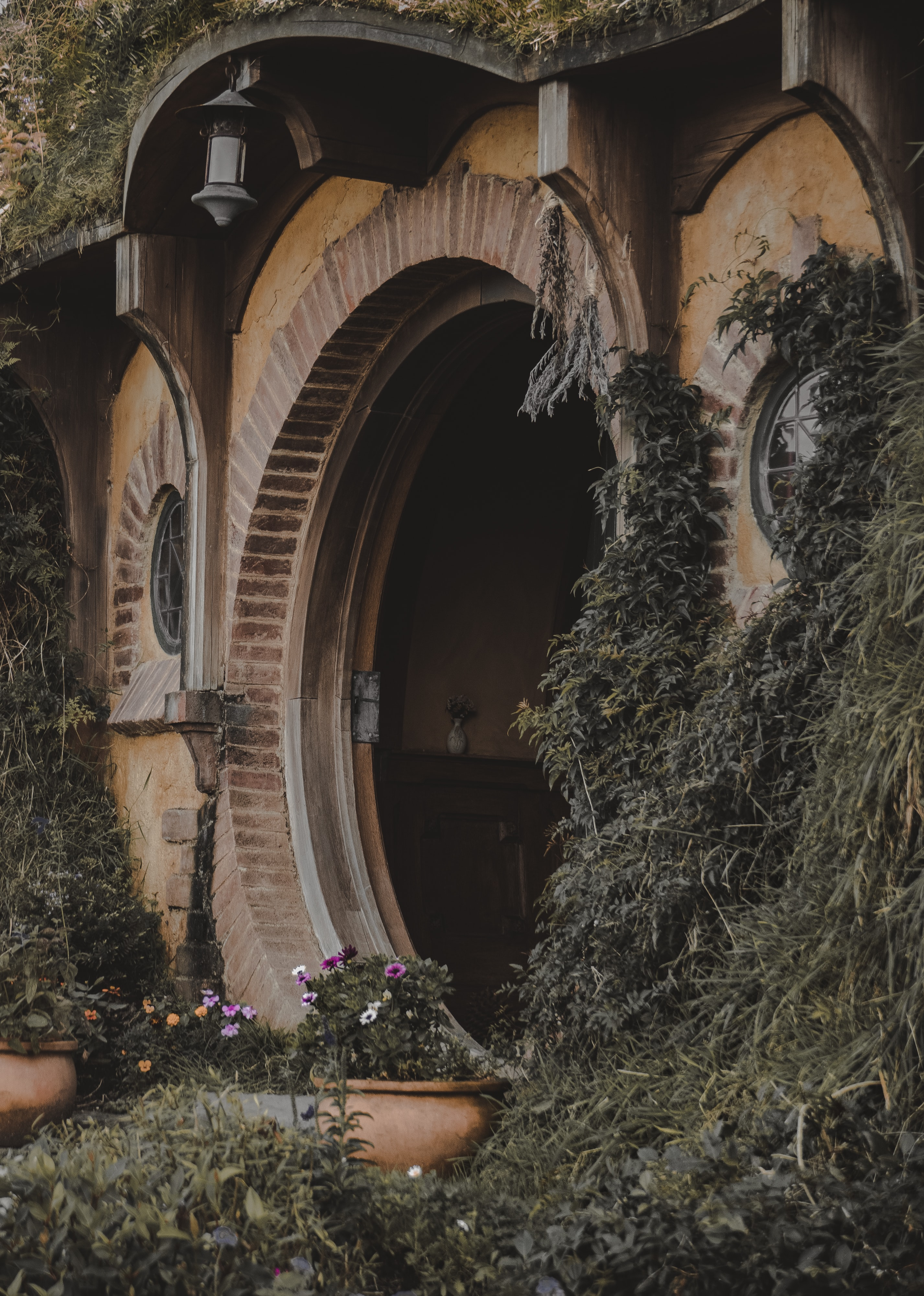 brown wooden archway with grass plant