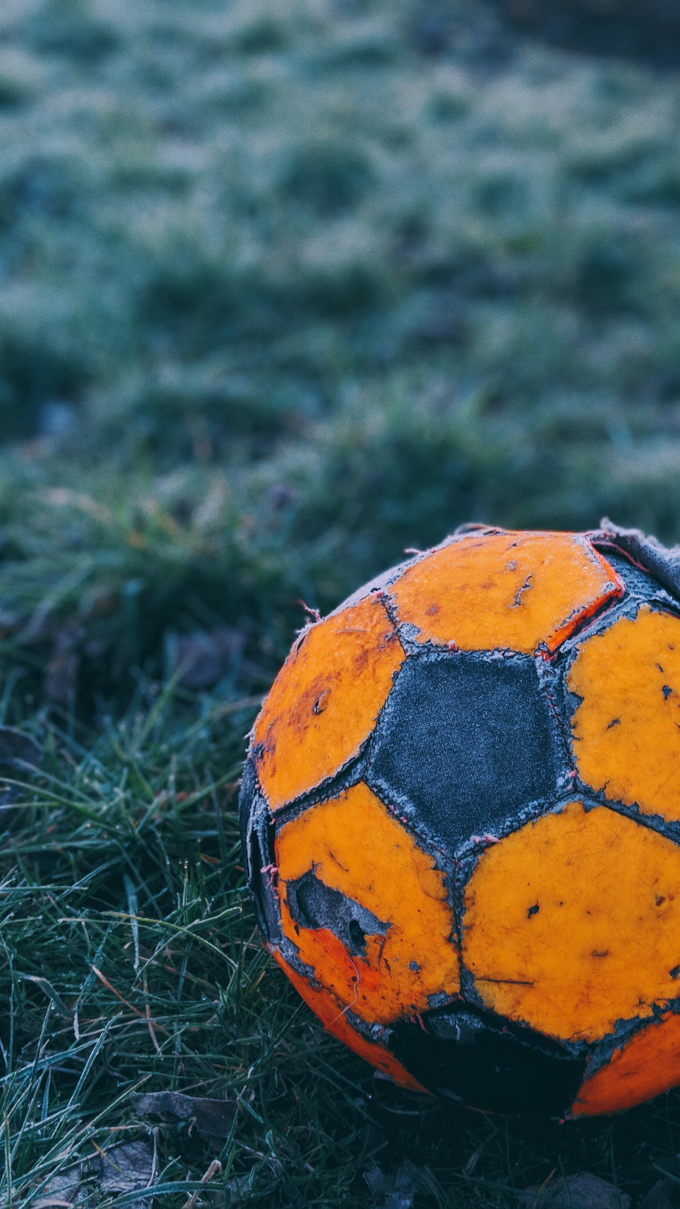 orange and black soccer ball on the field
