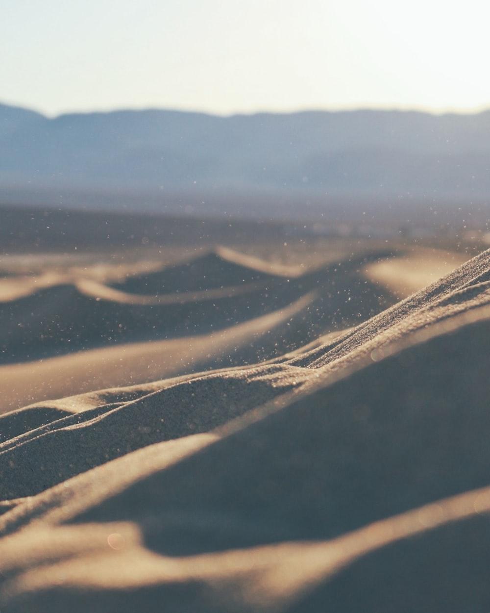 closeup photo of sand dunes during daytime