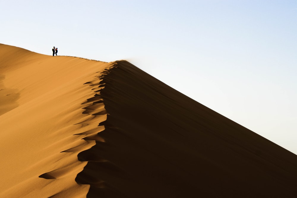 two persons standing on sand dunes