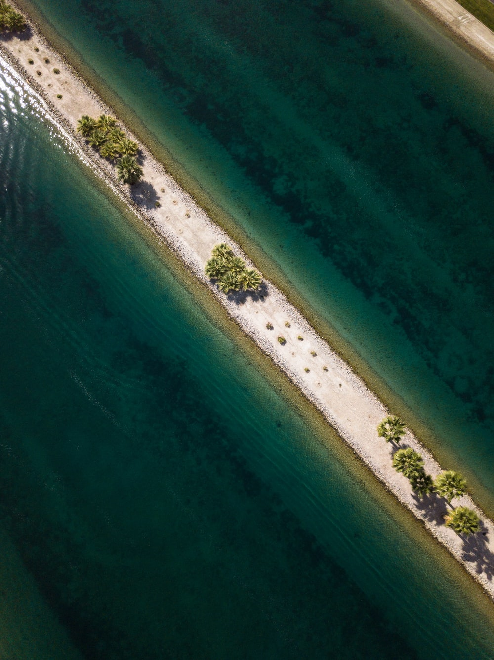 aerial view of body of water and green leafed trees