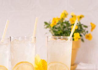 sliced lemon beside two clear drinking glasses