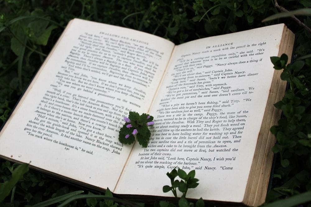 green leaf on book
