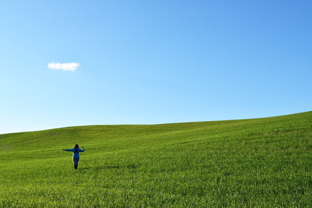 person walking on field of grass