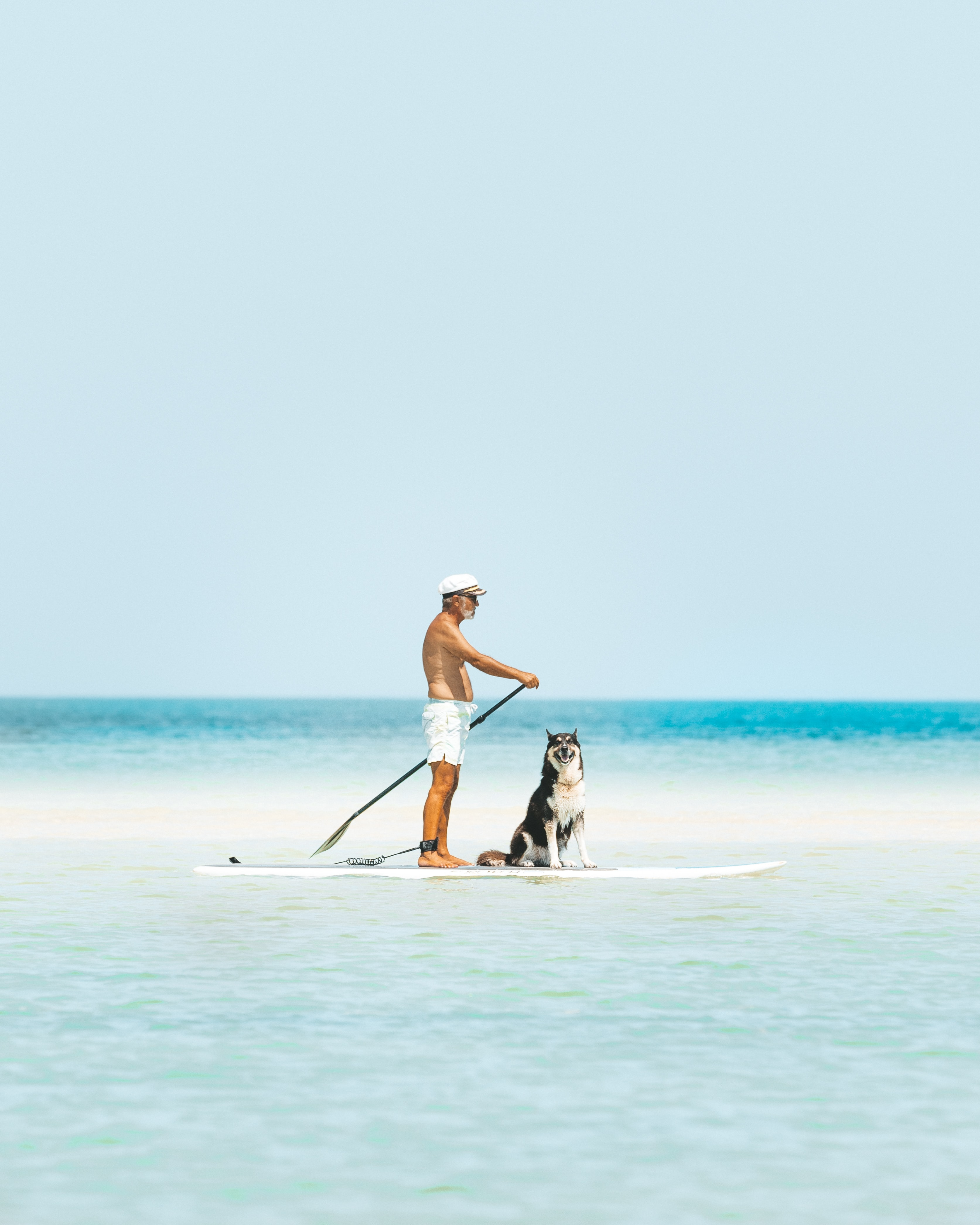 man and dog riding paddleboard in the sea