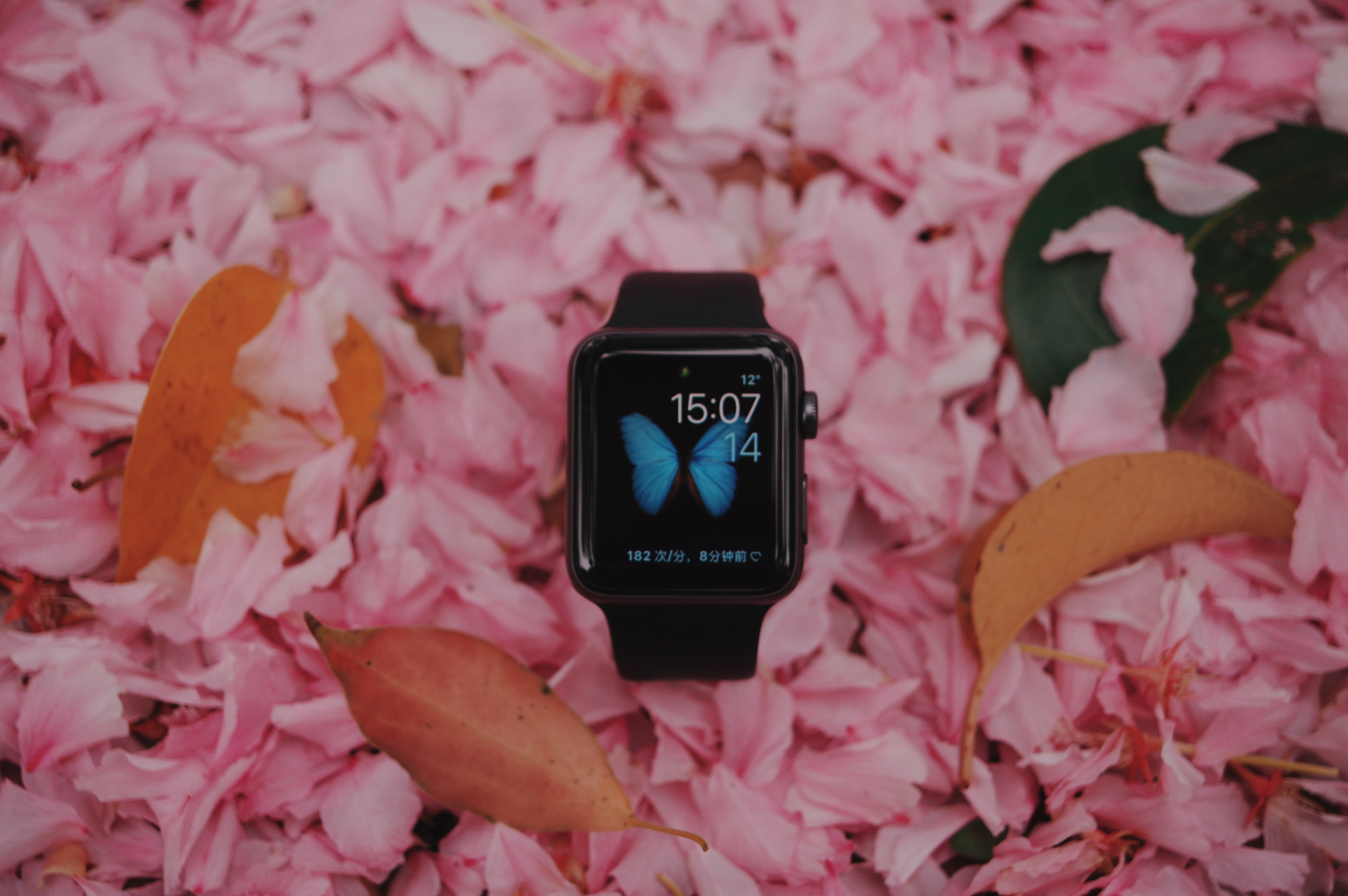 space black aluminum case Apple Watch with black Sport Band on pink petals