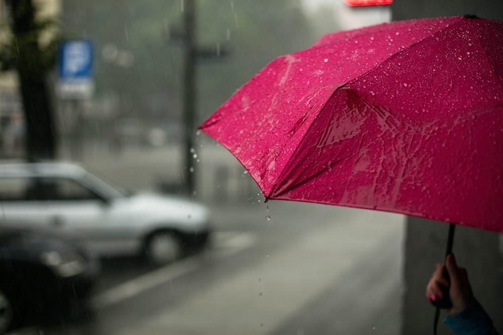 傘 ピンク 雨