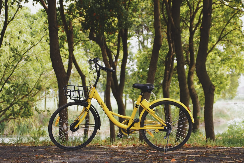 photography of yellow bike parked near trees