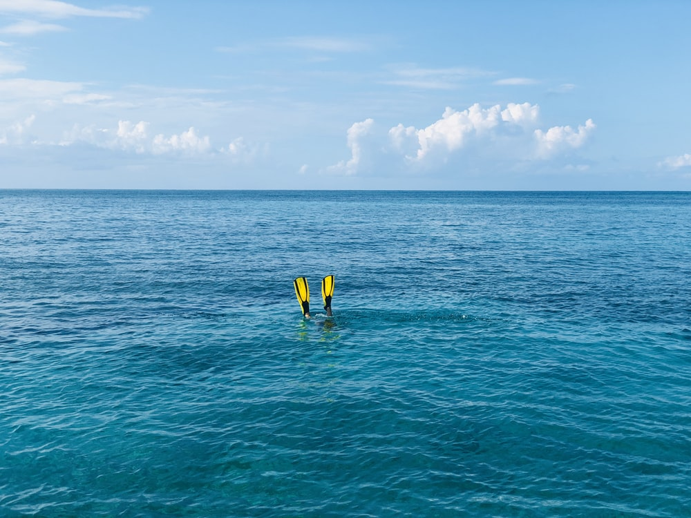 person diving on sea with yellow flippers