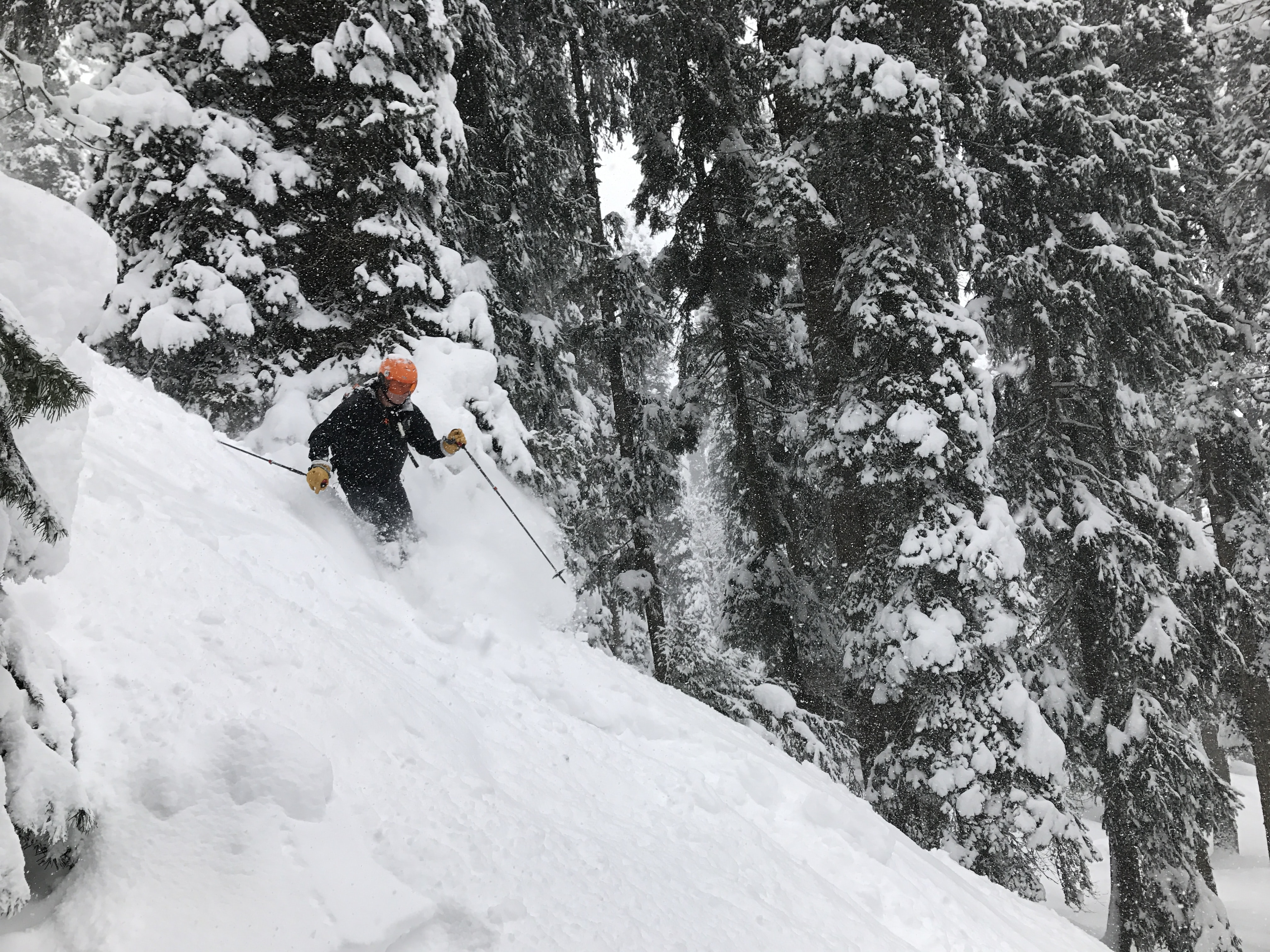 person skiing during daytime