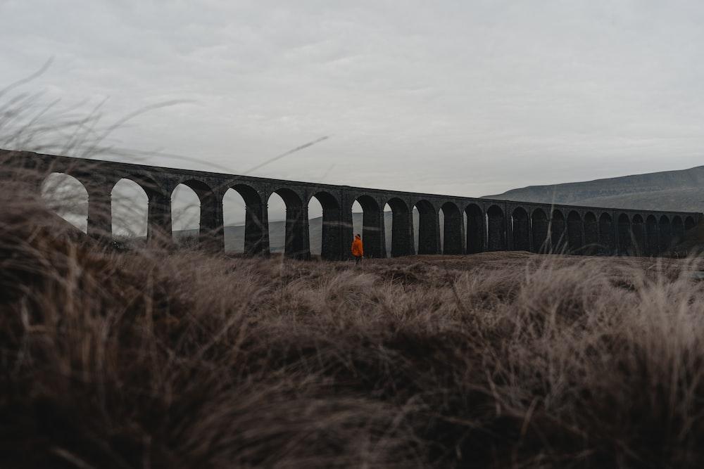 person standing near concrete bridge