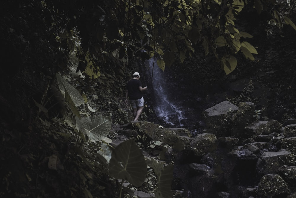 person standing near waterfall in forest