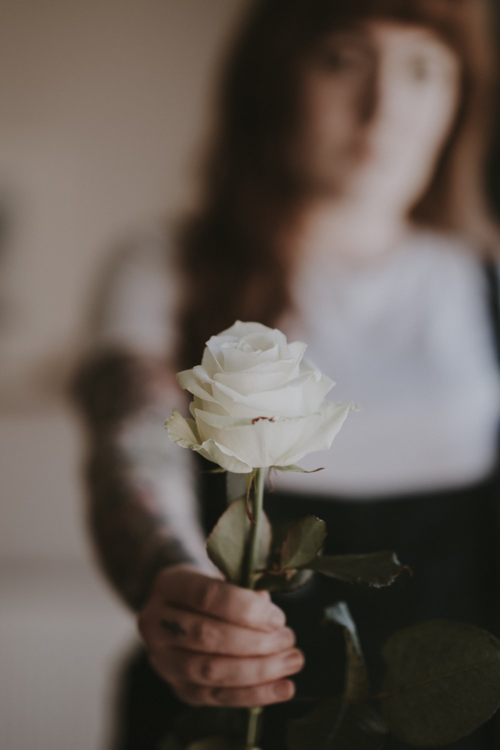 woman holding white rose
