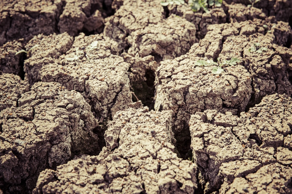 cracked brown soil