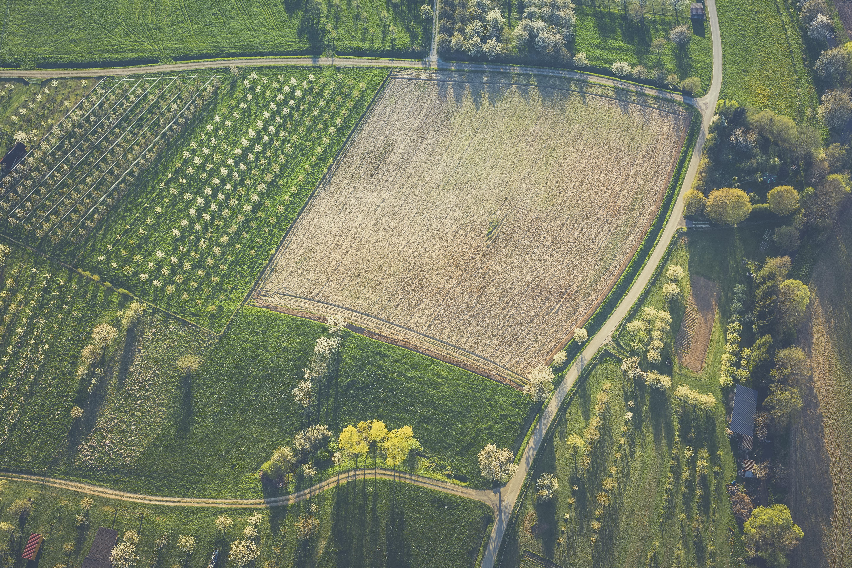 bird's eye view of field