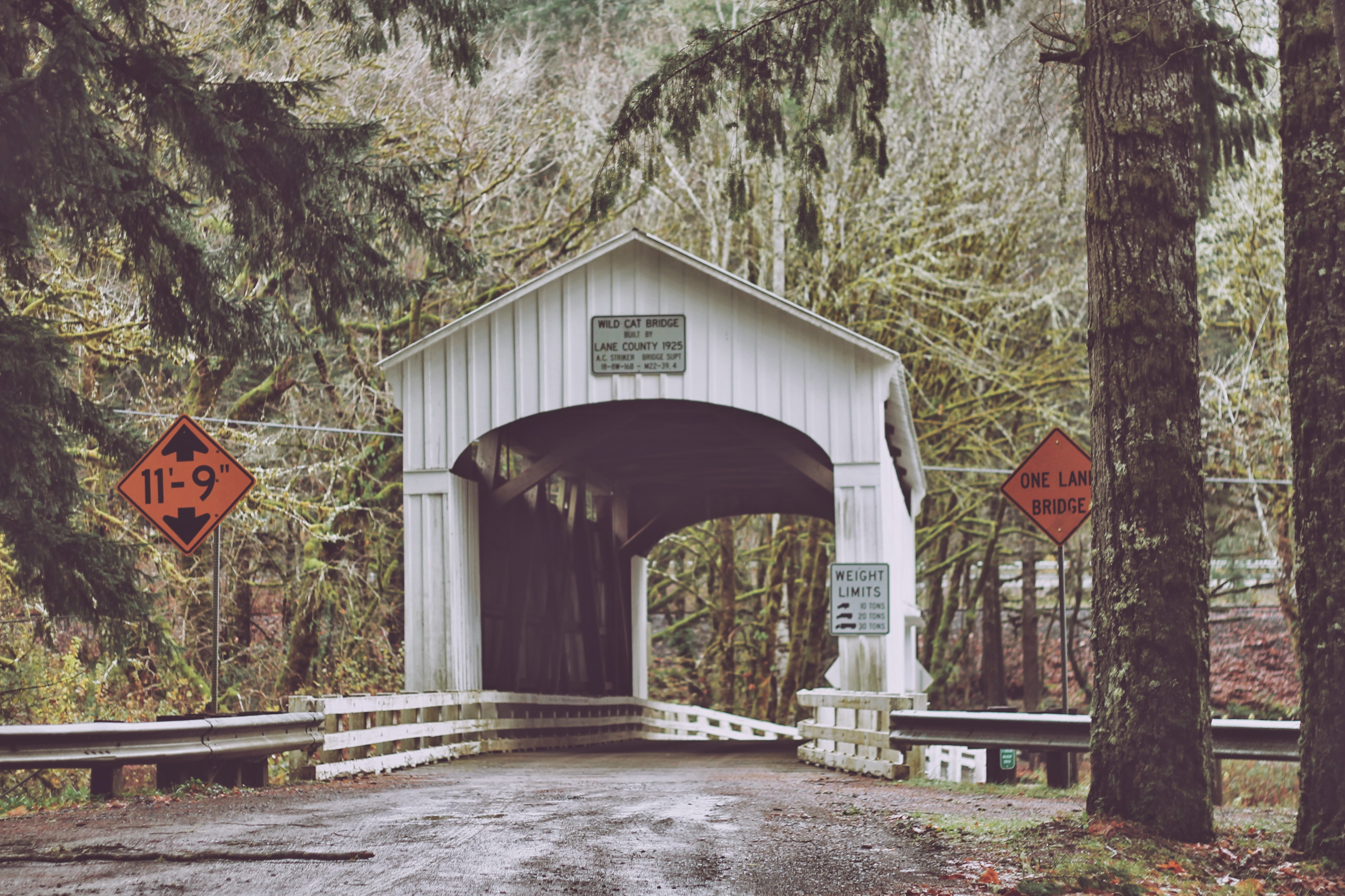 white bridge with shed