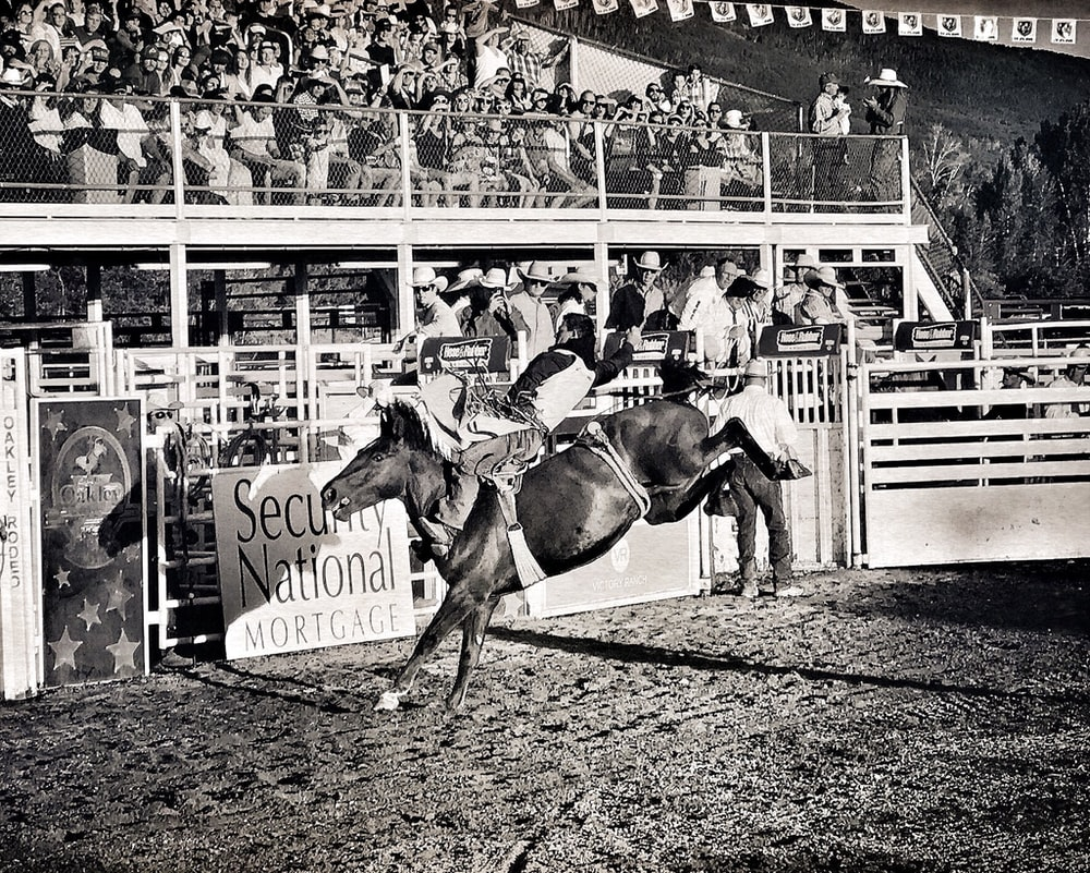 grayscale photo of rodeo show