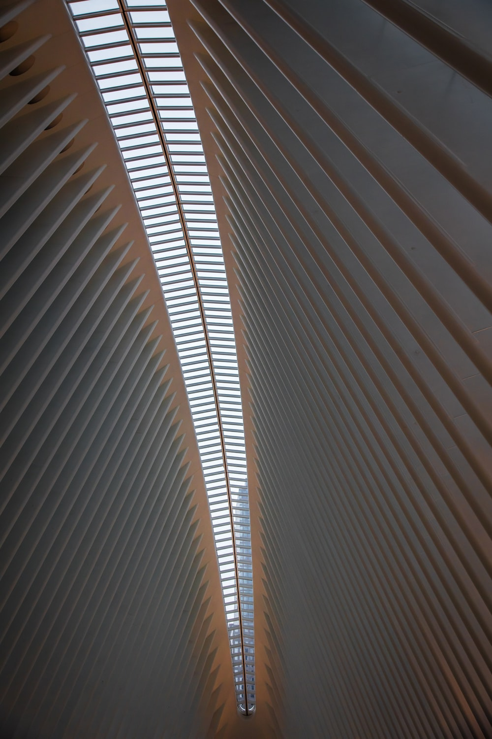 worm's-eye view of white ceiling