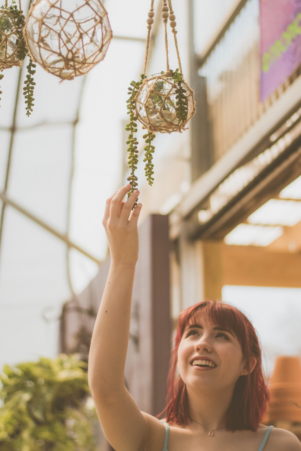 person holding green hanging plant