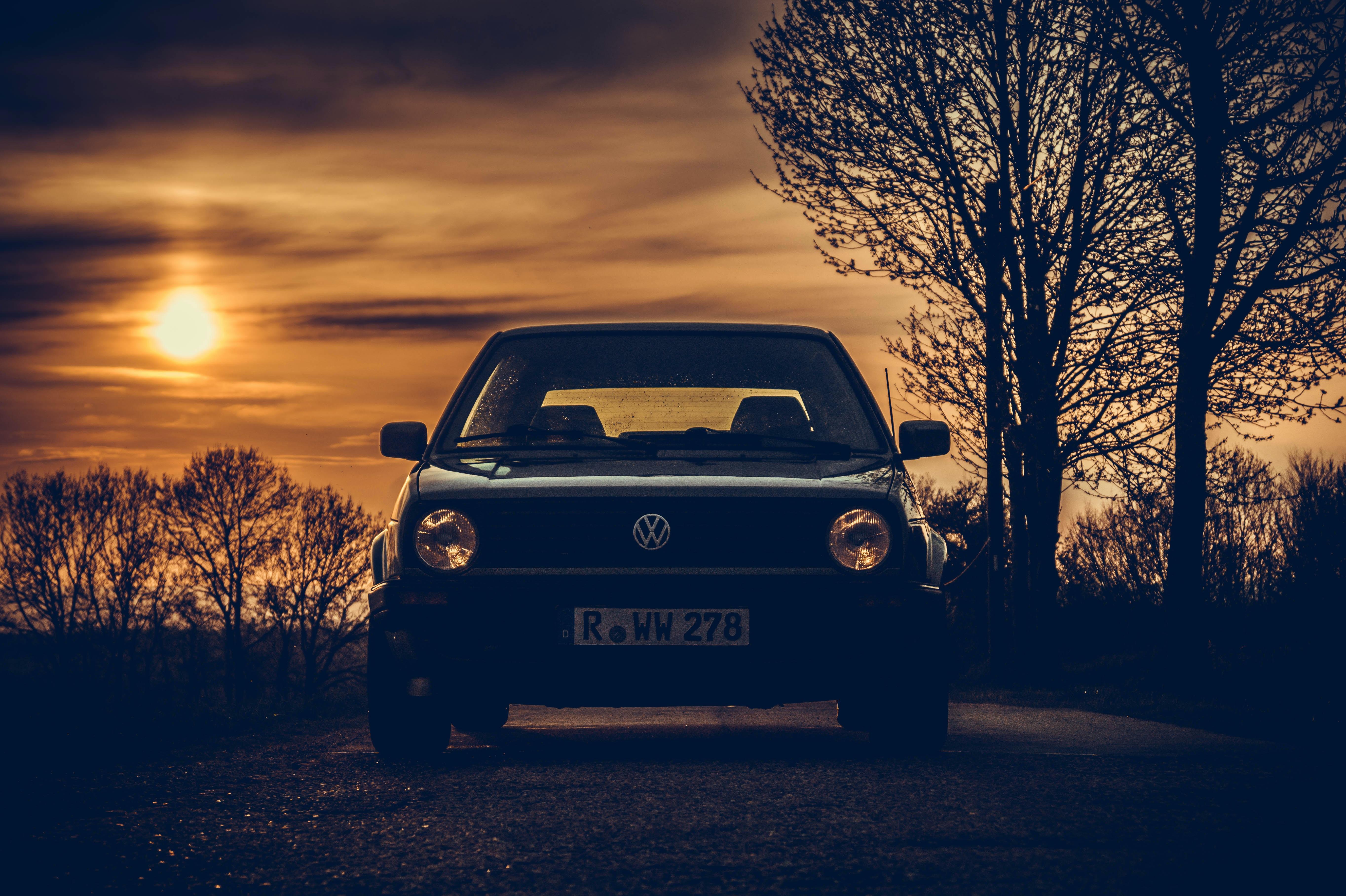 black Volkswagen vehicle in road beside bare trees at golden hor