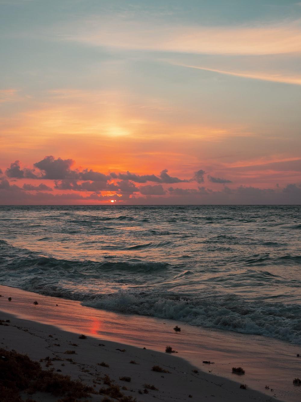 shore near ocean at golden hour