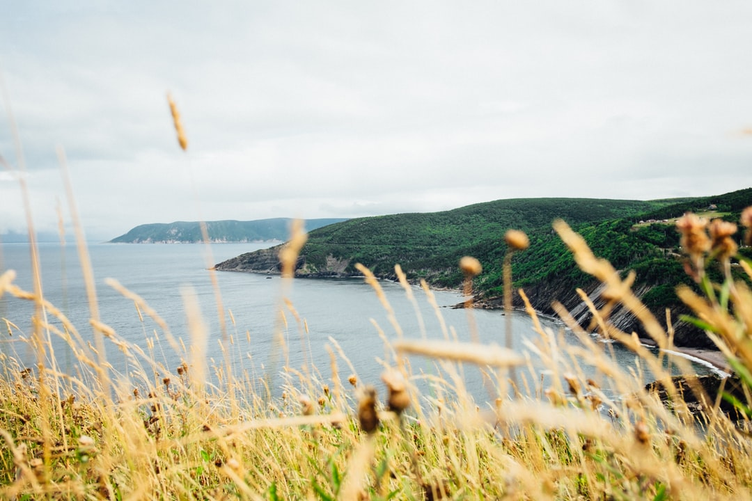Morning views from Meat Cove Campground