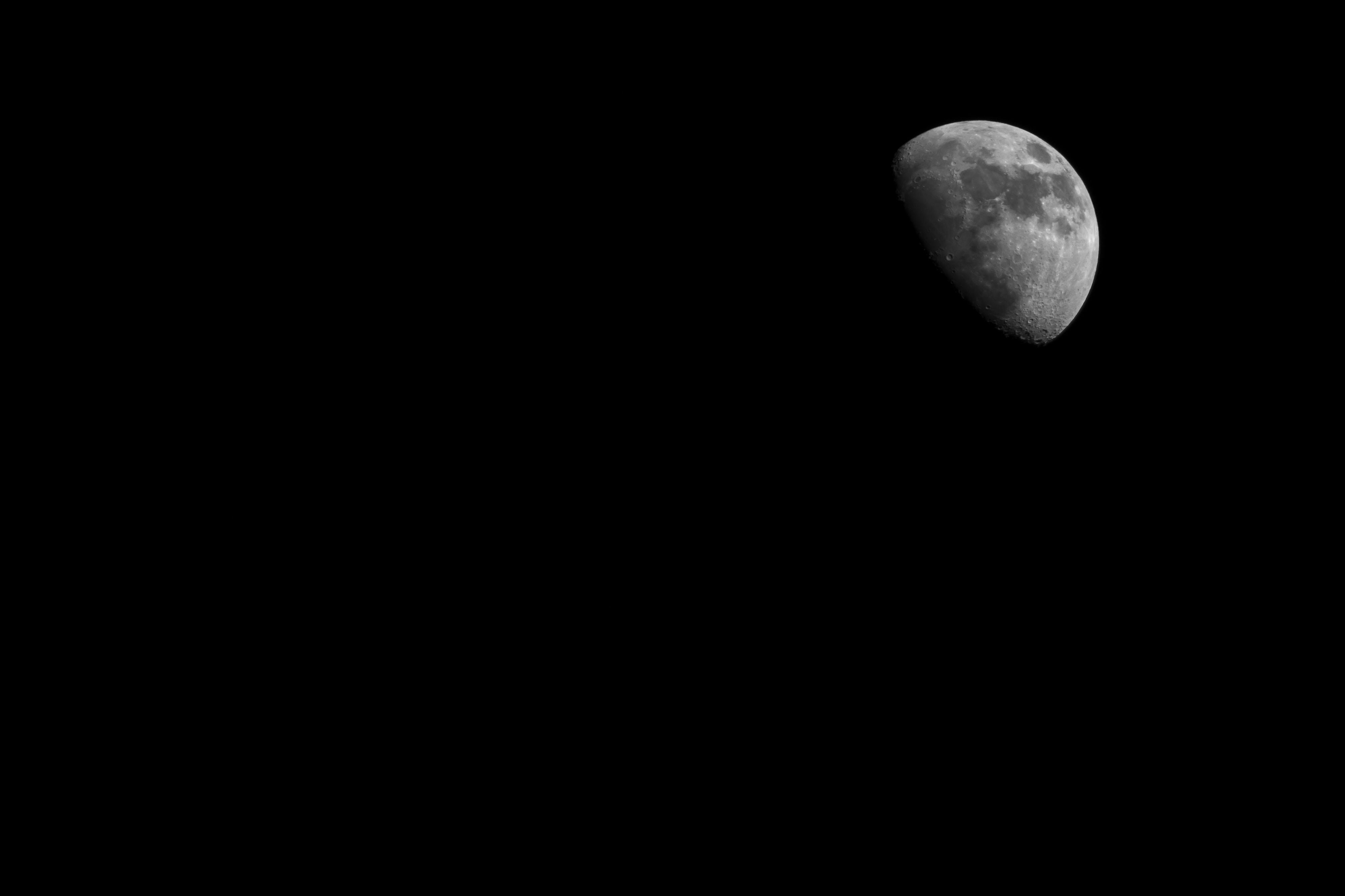shallow focus of half moon