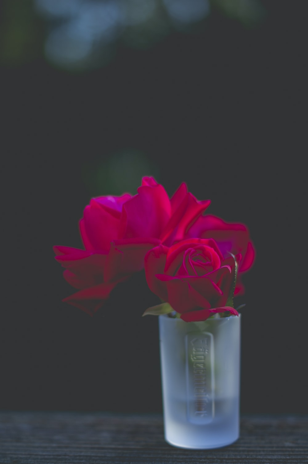red roses in frosted shot glass