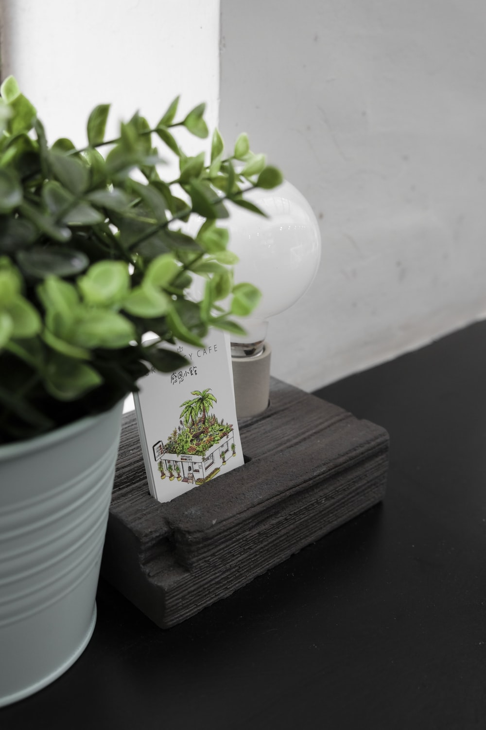 book near green leafed plant and white lightbulb