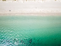 aerial view photography of beach during daytime