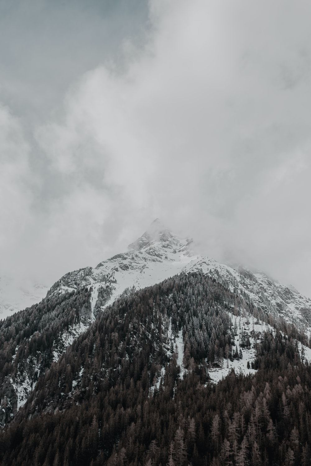 mountain covered with snow and fogs