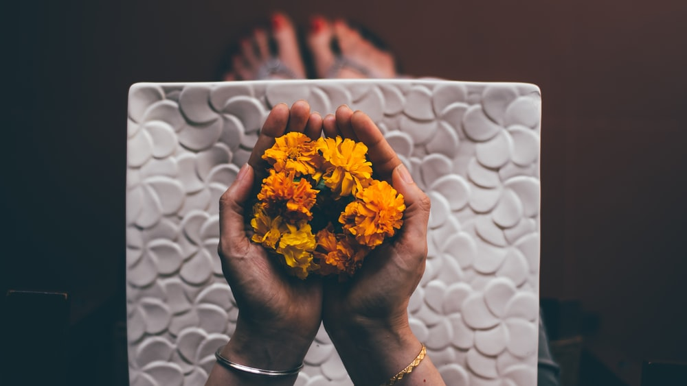 person hand holding yellow flowers
