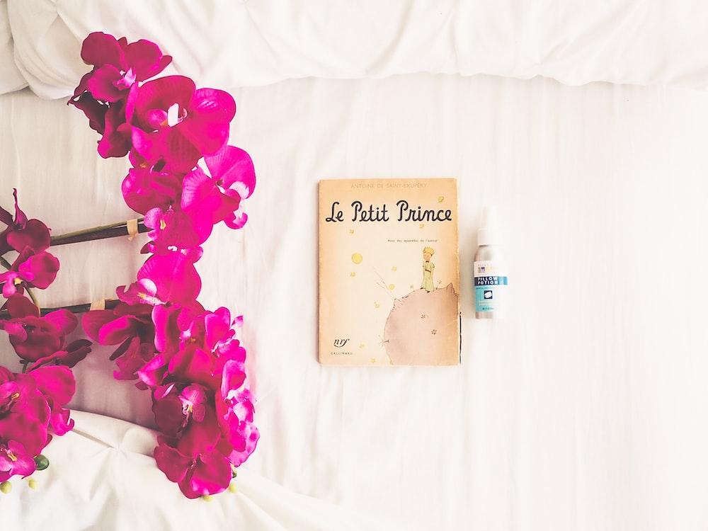 Le Petit Prince book near spray bottle