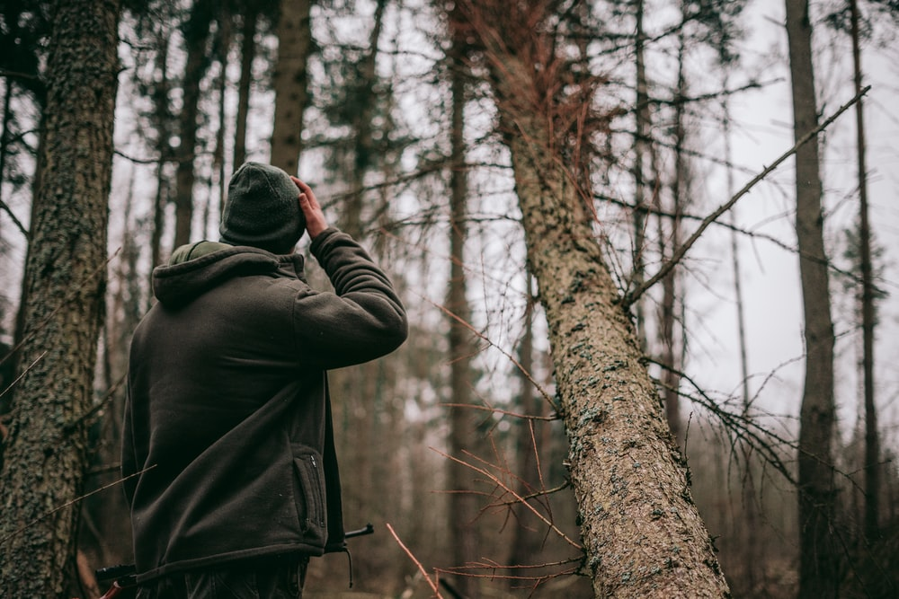 person standing in middle of forest during daytime