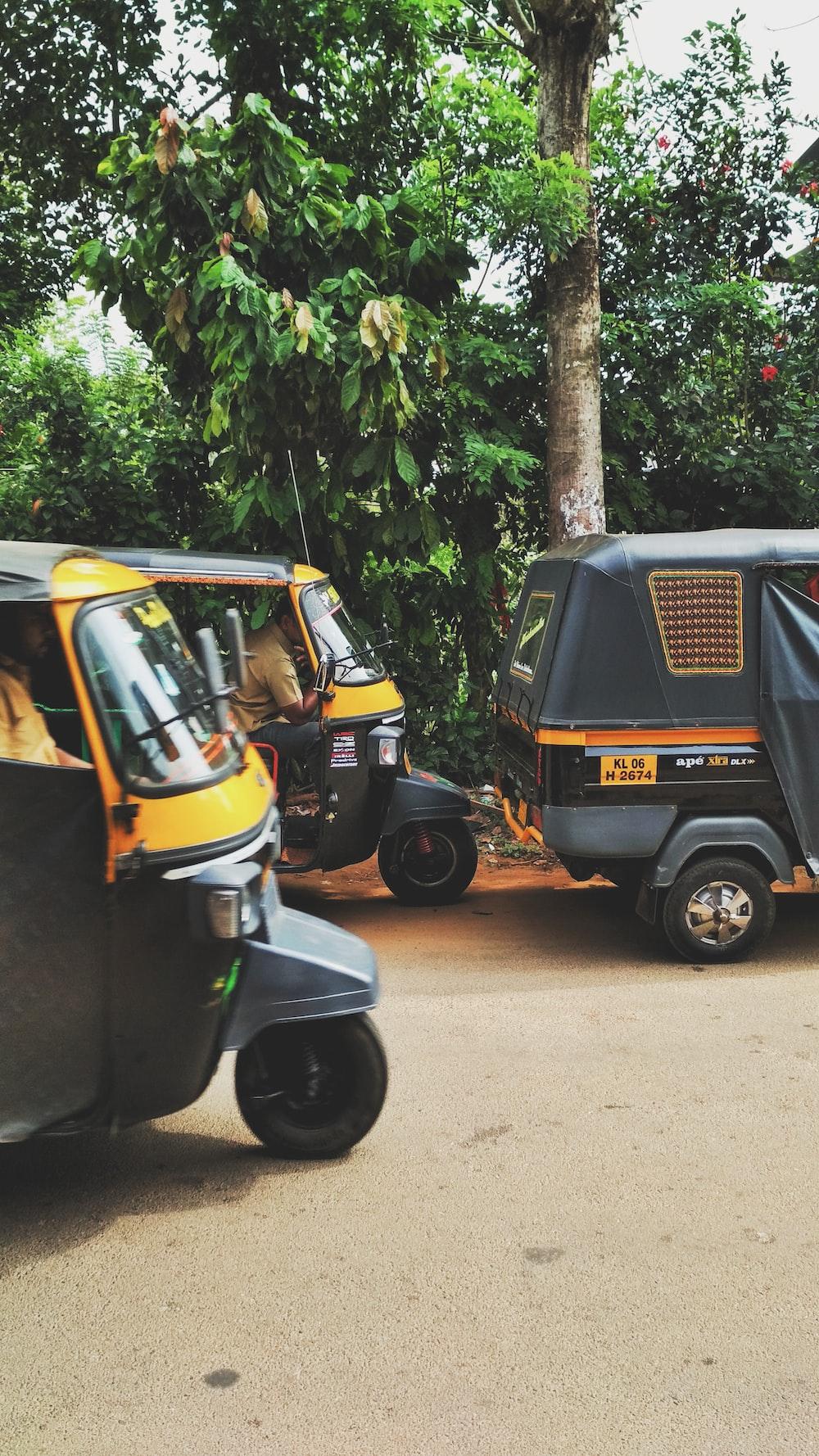auto-rickshaw passing through tree