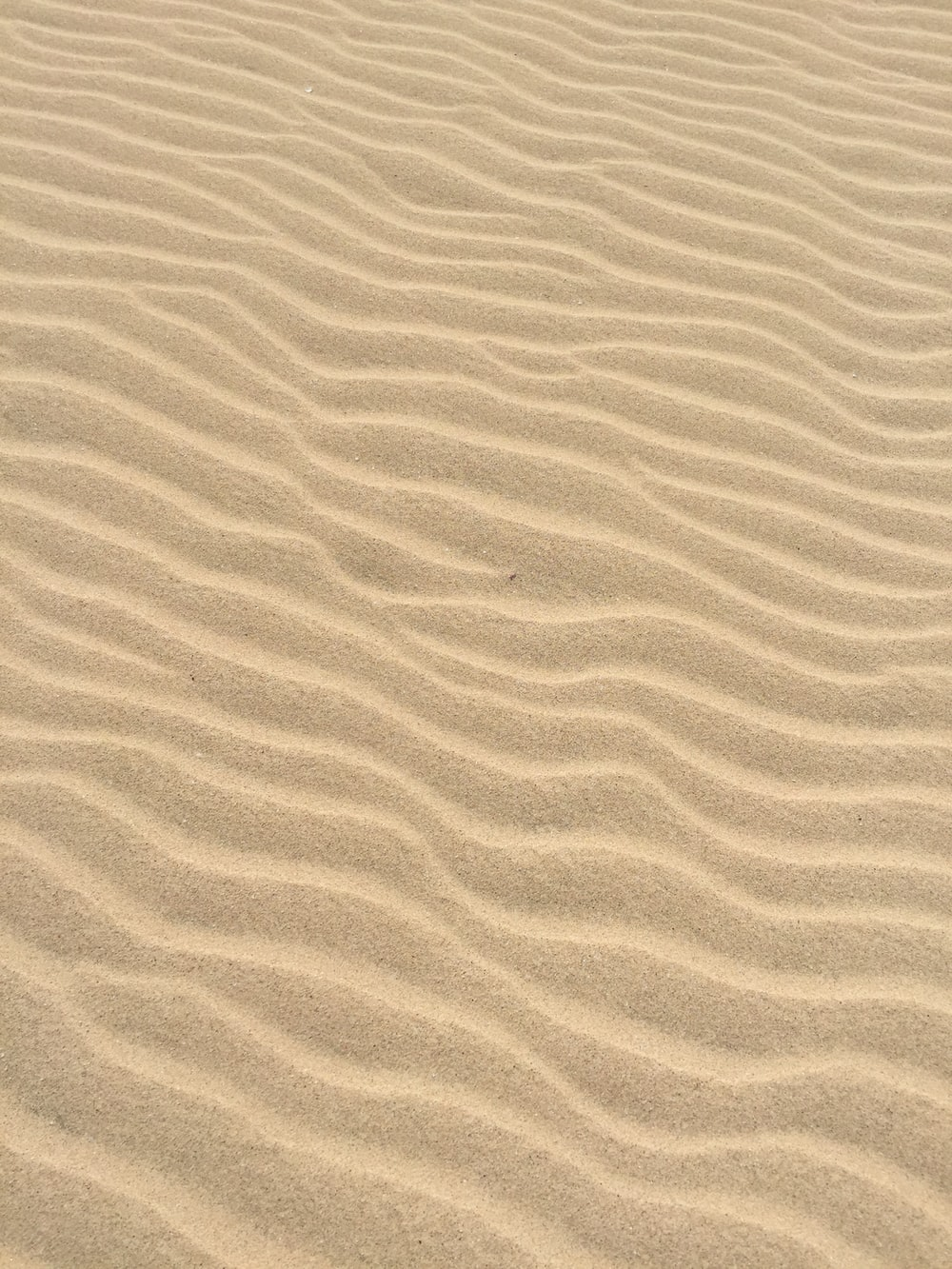 500 Sand Texture Pictures Hd Download Free Images On Unsplash