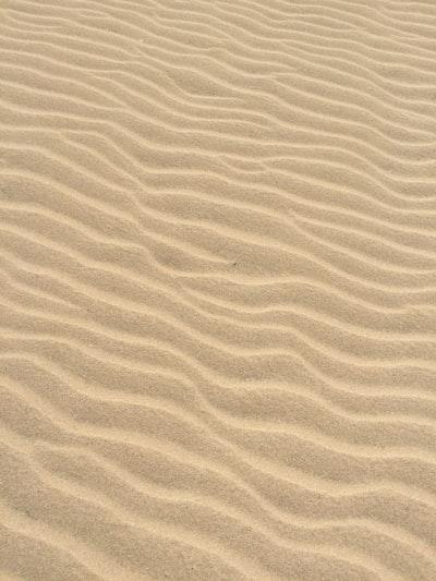 on a beach walk