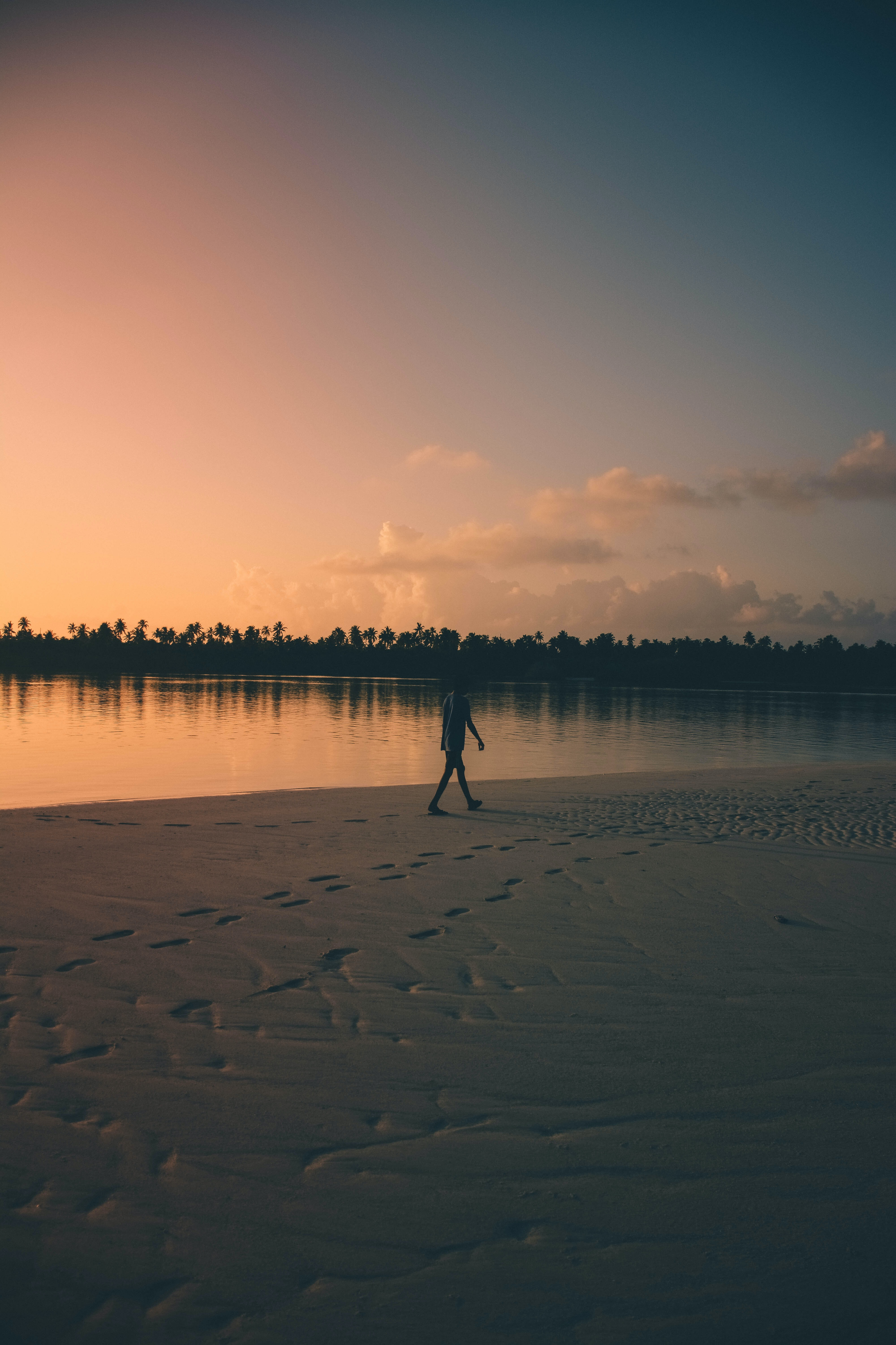 person walking on shore during sunset