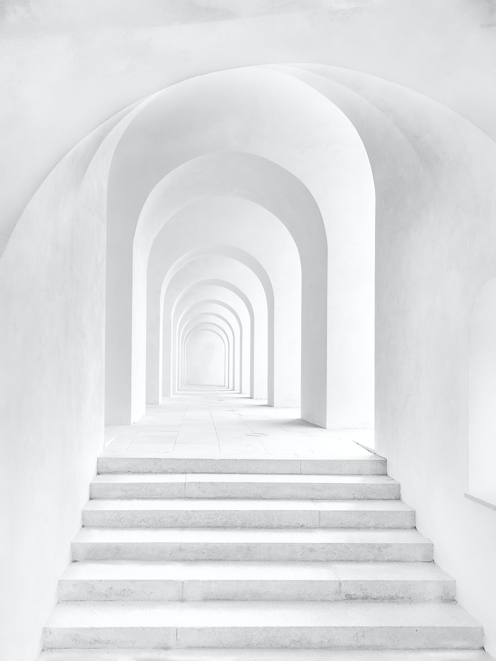 900+ White Background Images: Download HD Backgrounds on Unsplash