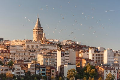 aerial view of buildings and flying birds turkey zoom background