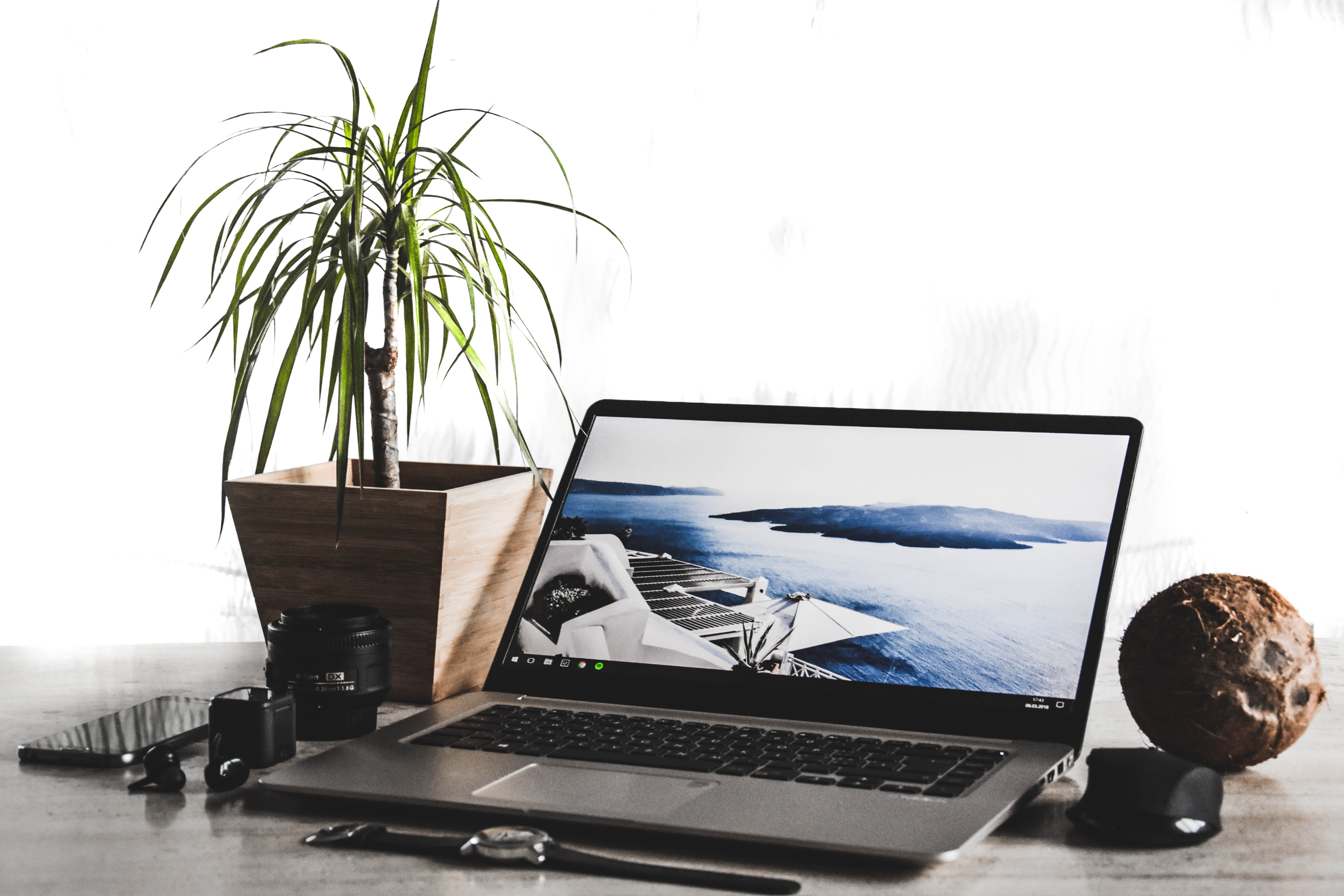 laptop computer beside potted plant