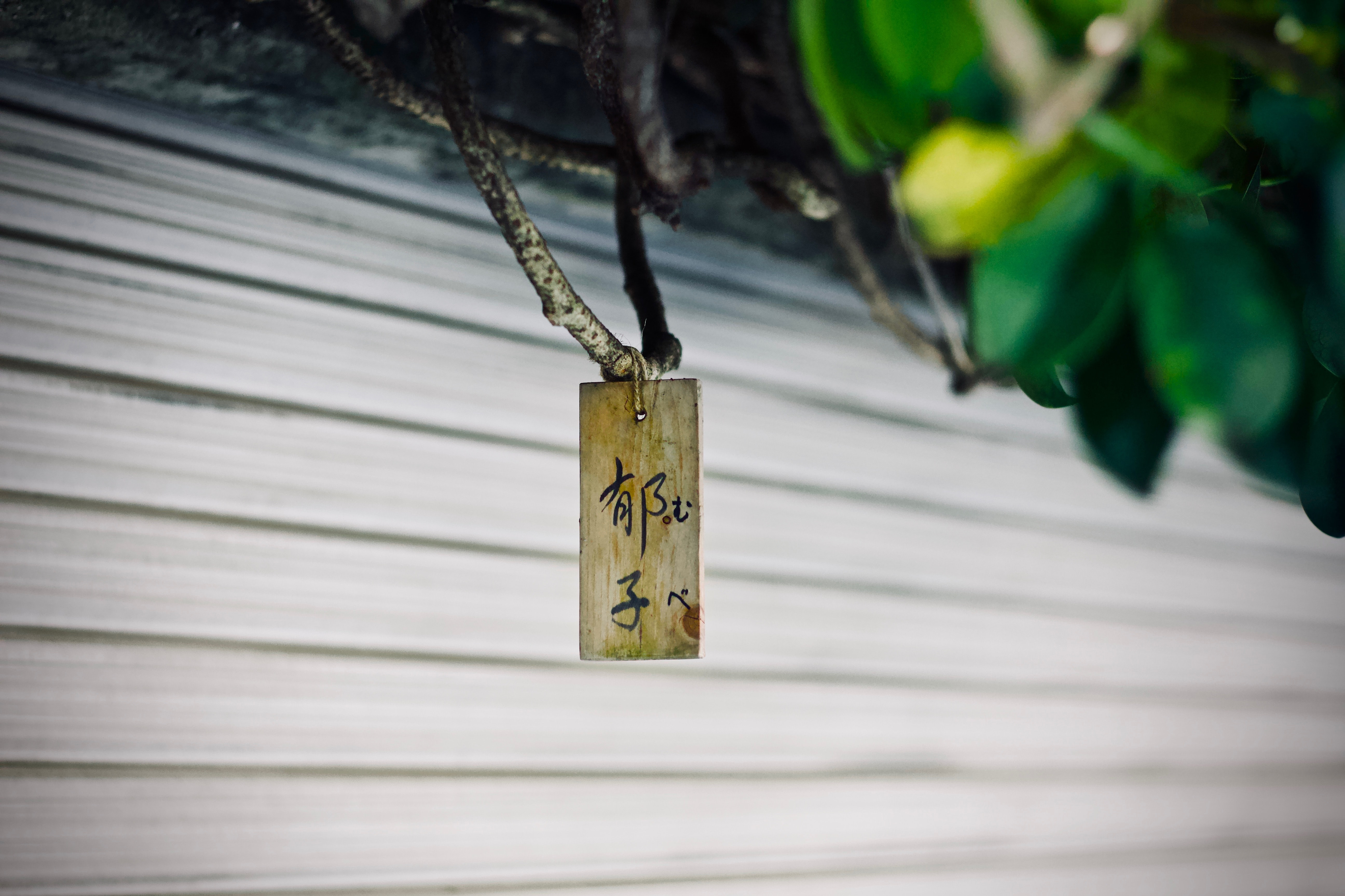 brown wooden decor hanged on twig