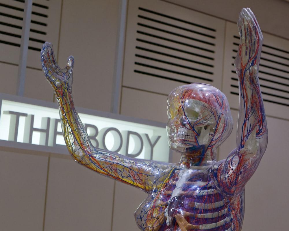 The Body statue