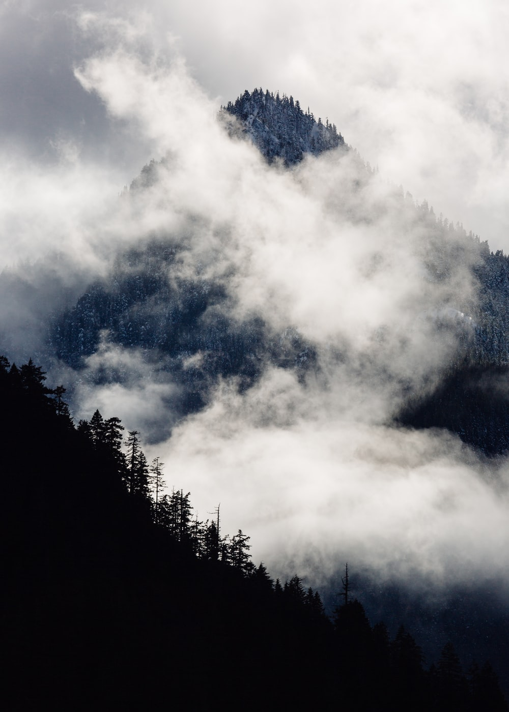 silhouette photography of mountain covered with mist